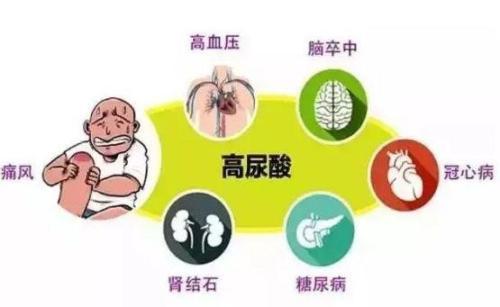 痛风病致命的原因究竟在哪?